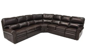 Carlton Reclining Sectional in Guanaco Dark Brown