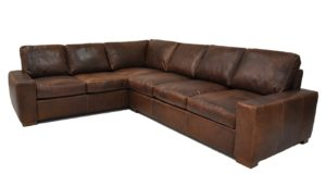 Max Sectional in Wilderness Chocolate