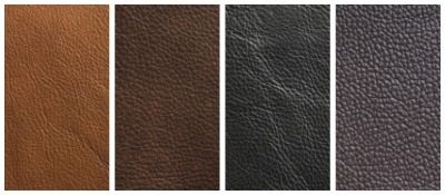 TXL Collection - Leathers